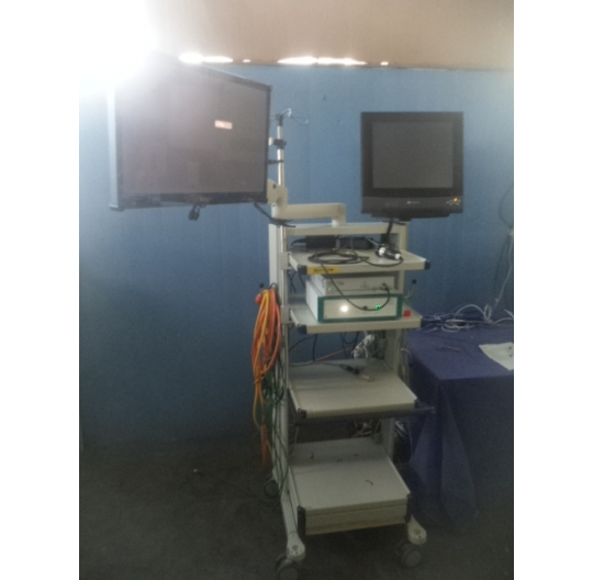 Endoscopy cart with 2 monitors